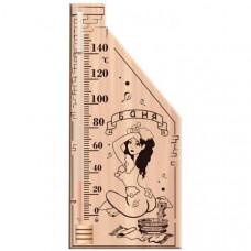 Термометр ТСС5