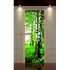 ALDO Дверь стекл. Бронза с фотопечатью